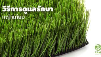 เคล็ดลับการดูแลและทำความสะอาดหญ้าเทียม